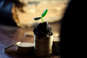 small funds still does it for an agricultural entrepreneur